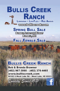 Grass Roots Limousin Sale